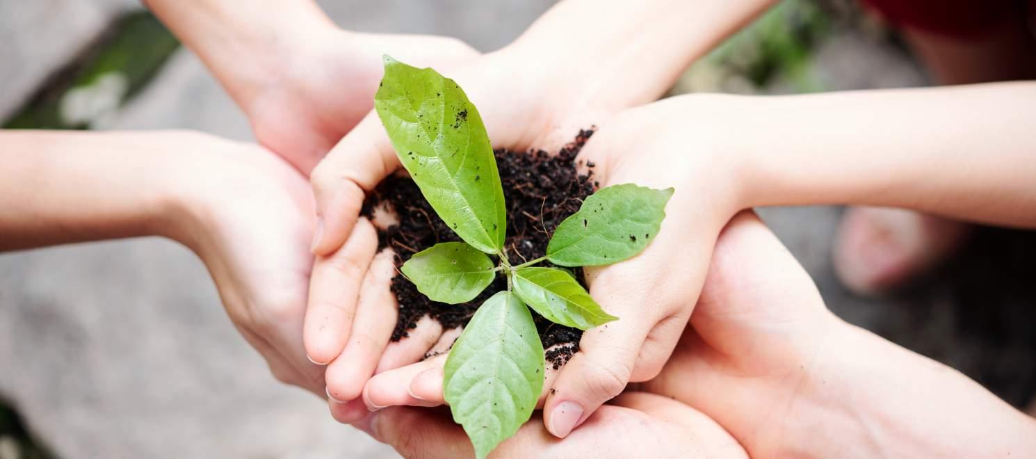 Nachhaltigkeit im Spreespeicher